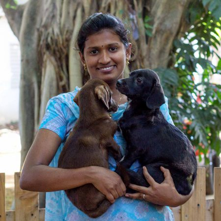 Blue Cross of India - Animal Rescue, Hospital, Shelter & ABC-Rabies
