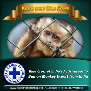 Blue of India Achievements: Export of Monkey Banned in India